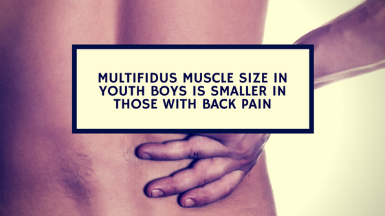 multifidus muscle size in youth boys is smaller in those with back pain