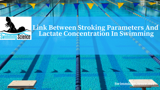 Link between stroking parameters and lactate concentration in swimming