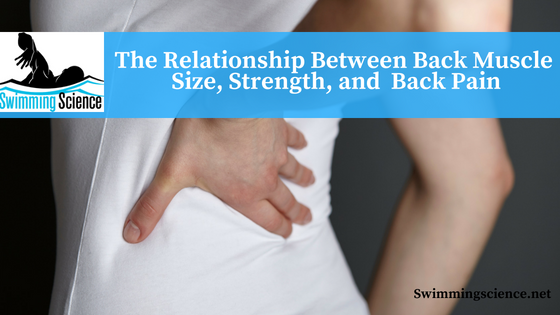 The Relationship Between Back Muscle Size, Strength, and Back Pain