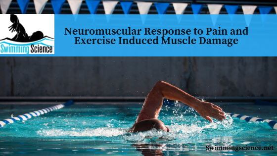 Neuromuscular Response to Pain and Exercise Induced Muscle Damage