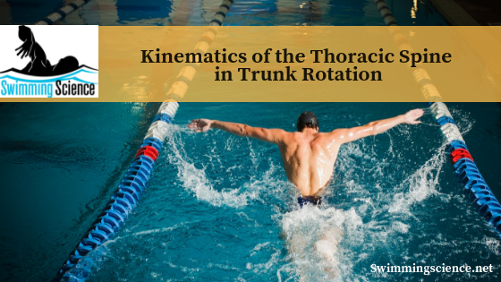 Kinematics of the Thoracic Spine in Trunk Rotation